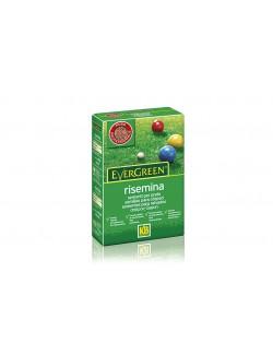 Evergreen Risemina da Kg 1 - KB Scotts