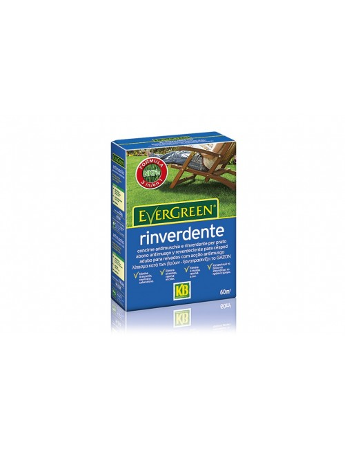 Concime Evergreen Rinverdente 14+0+5(+6) da Kg 2 - KB Scotts