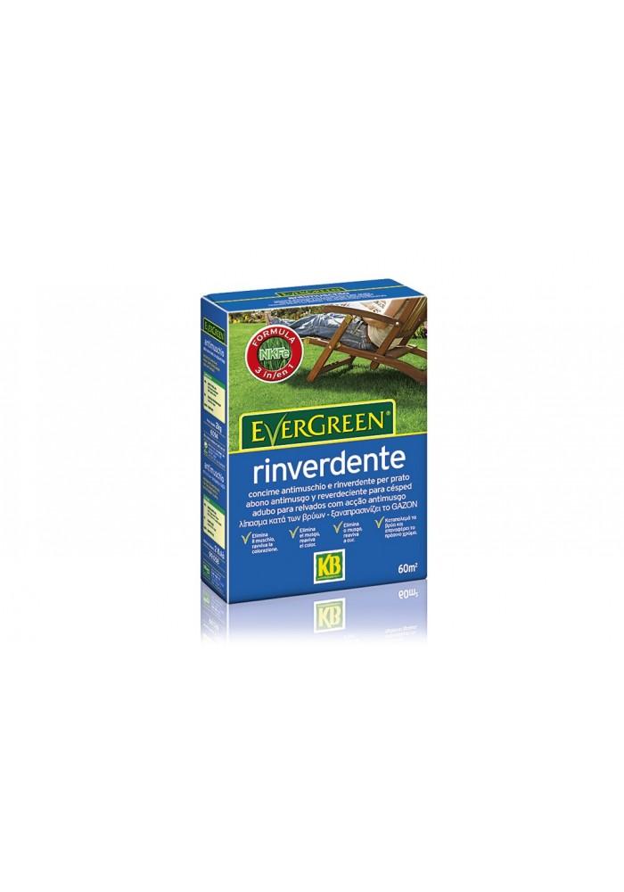 Concime Evergreen Rinverdente 14+0+5(+6) da Kg 2 - KB Scotts