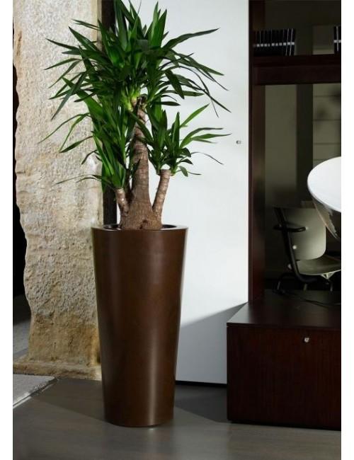 Vaso Ilie Gloss - Khilia Collection