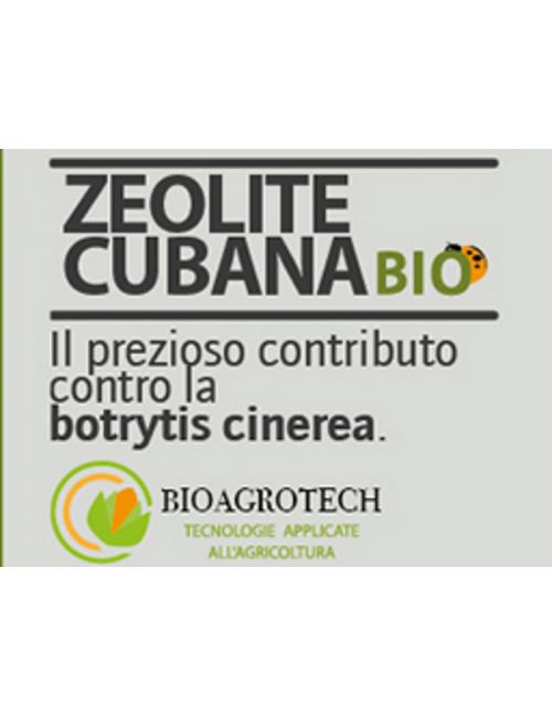 Zeolite Cubana da Kg 6 BioAgrotech