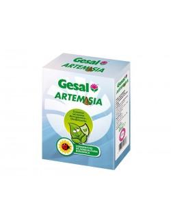 Artemisia da 250 gr - Gesal
