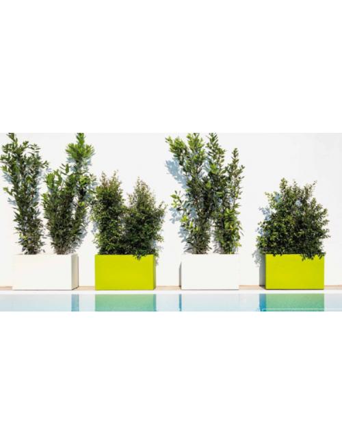 Fioriera mod. Flowerpot -  Linea Cromia Monacis