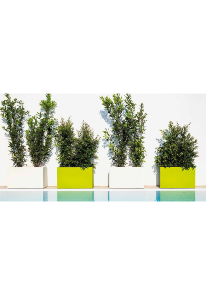 Fioriera mod. Flowerpot - Linea Monacis