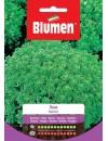 Basilico Nano- Blumen