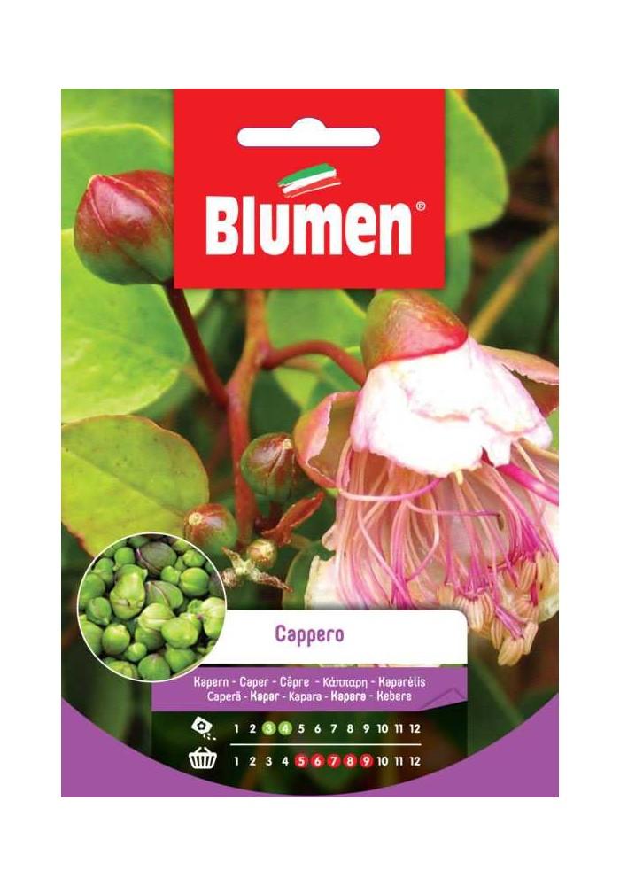 Cappero - Blumen
