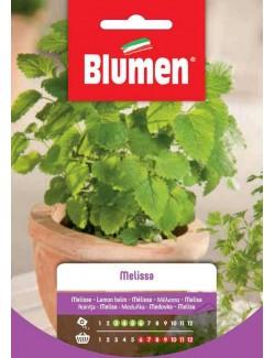 Melissa - Blumen