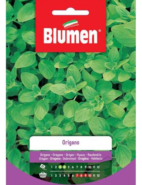 Origano - Blumen