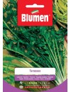 Tarassaco - Blumen