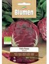 Cicoria Palla Rossa Bio - Blumen