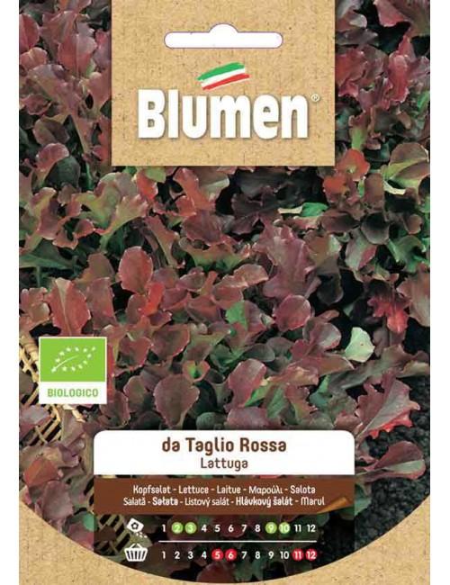 Lattuga da Taglio Rossa Bio - Blumen