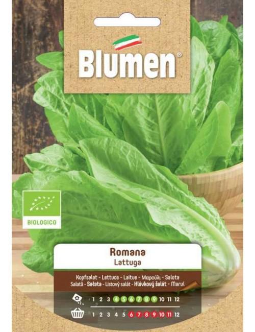 Lattuga Primaverile Bio - Blumen
