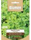Prezzemolo Bio - Blumen