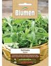 Rucola Bio - Blumen