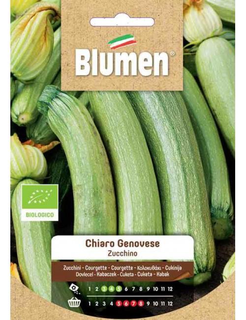 Zucchino Chiaro Bio - Blumen