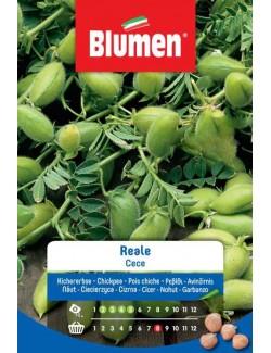 Cece Reale da 250 gr - Blumen