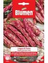 Fagioli Borlotti nani Lingua di Fuoco da 250 gr  - Blumen