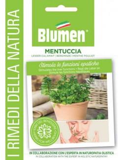 Mentuccia - Blumen