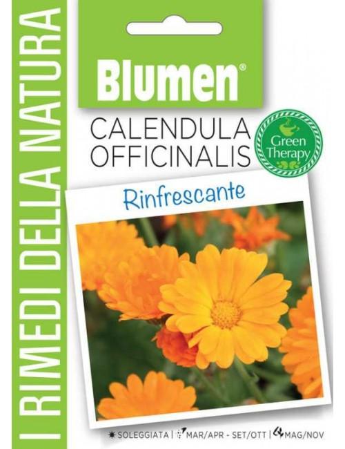 Calendula Officinalis - Blumen