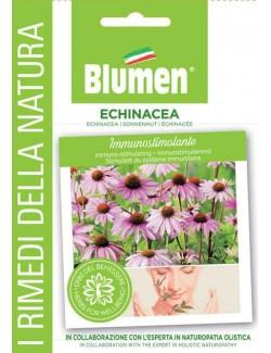 Echinacea - Blumen