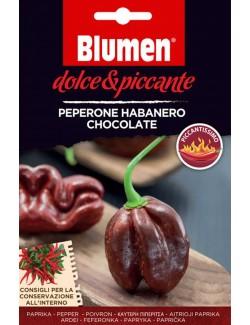 Peperone Habanero Chocolate - Blumen