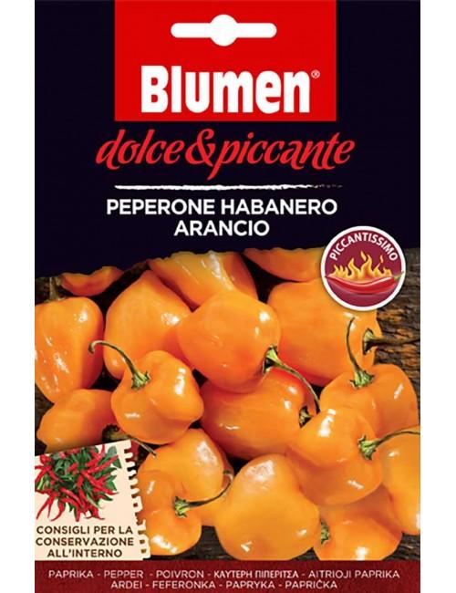 Peperone Habanero Arancio - Blumen