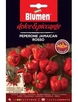 Peperone Jamaican Rosso - Blumen