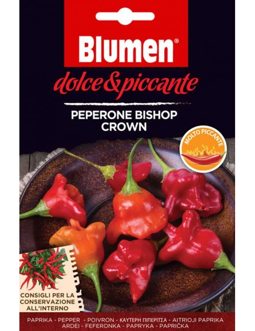 Peperone Bishop Crown - Blumen