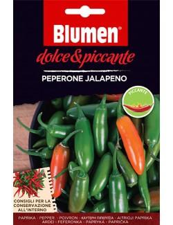 Peperone Jalapeno - Blumen