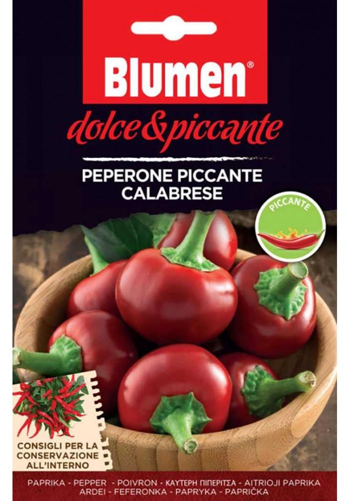 Peperone Piccante Calabrese - Blumen