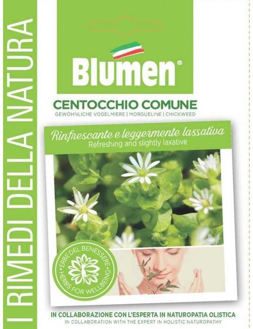 Centocchio - Blumen