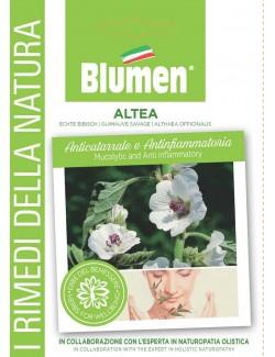 Althea - Blumen