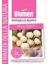 Ravanello Bianco - Blumen