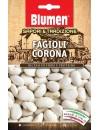 Fagiolo Corona - Blumen