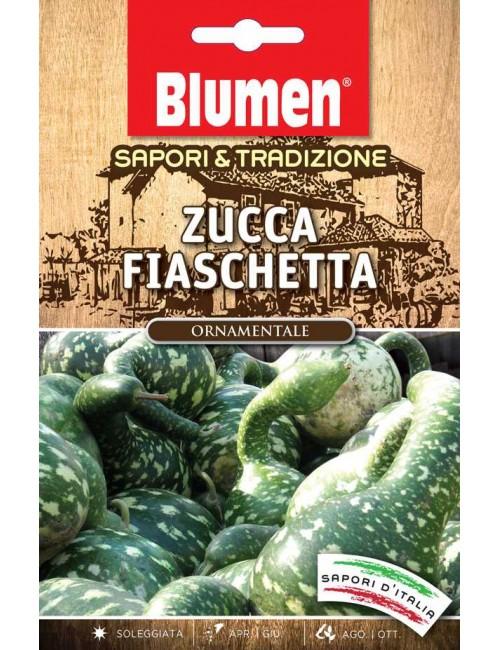 Zucca Fiaschetta - Blumen