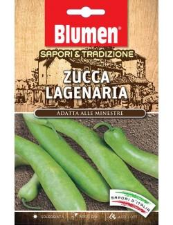 Zucca Lagenaria - Blumen