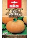Zucca Amazonka - Blumen