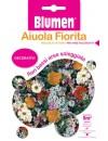 Miscuglio di Fiori Bassi per Aree Soleggiate - Blumen