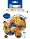 Miscuglio di Fiori Bassi per Aree Ombreggiate - Blumen
