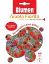 Miscuglio di Fiori Arcobaleno Estivo - Blumen