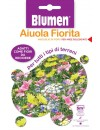 Miscuglio di Fiori per tutti i tipi di terreni - Blumen