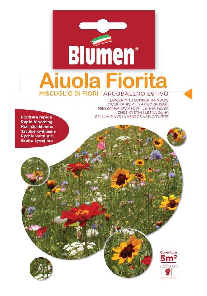 Miscuglio di Fiori Arcobaleno Estivo- Blumen