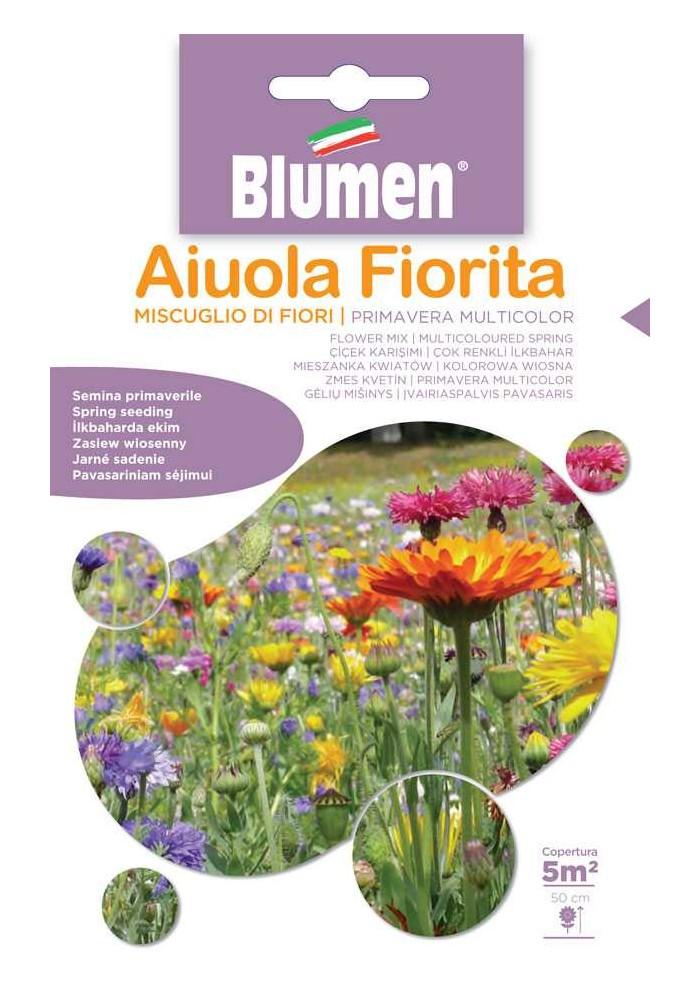 Miscuglio di Fiori Primavera Multicolor- Blumen