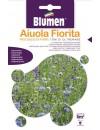 Miscuglio di Fiori Toni di Oltremare - Blumen