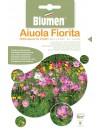 Miscuglio di Fiori Riflessi di Luce - Blumen