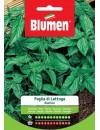 Basilico a Foglia di Lattuga - Blumen