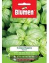 Basilico  Italiano Classico - Blumen