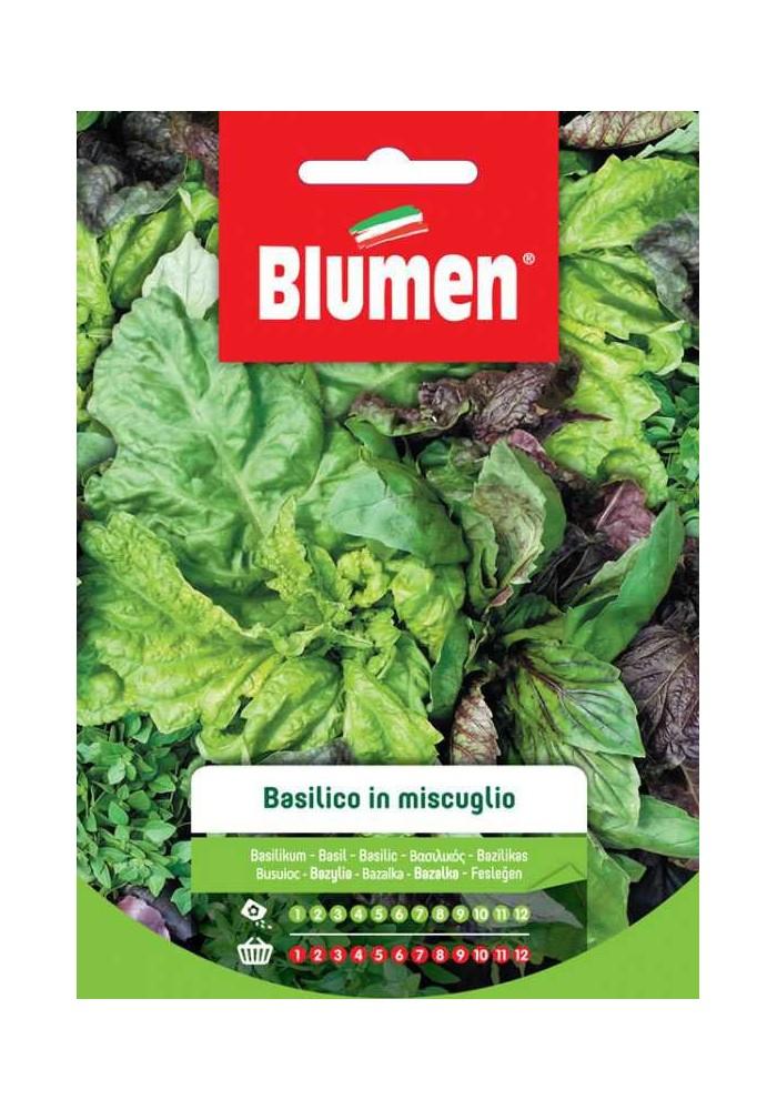 Basilico  in Miscuglio - Blumen