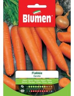 Carota Flakke - Blumen
