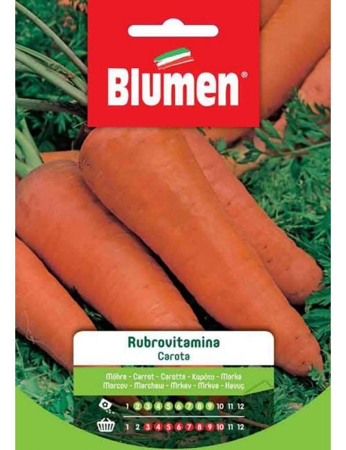 Carota Rubrovitamina - Blumen